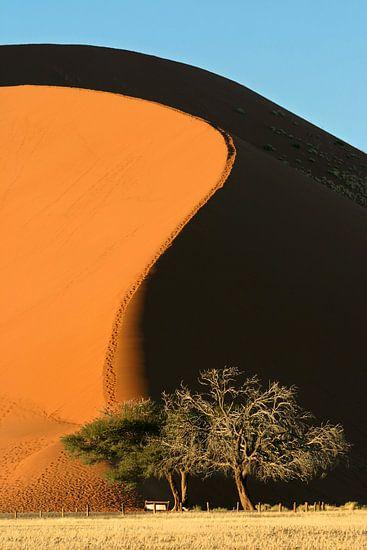 Zandduin van Antwan Janssen