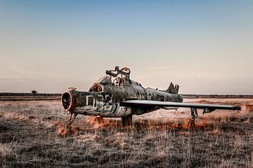 Flugzeug in der Morgensonne von William Linders