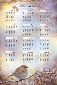Engelse kalender Robin on dreams