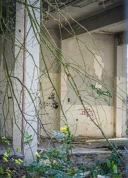 Blick durch das Grün auf eine alte Schule von Hanneke Bantje