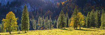 Herfst, Ammergauer Alpen van Walter G. Allgöwer
