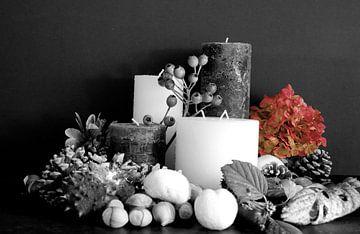 Herbst-Stillleben in schwarz und rot von Cora Unk