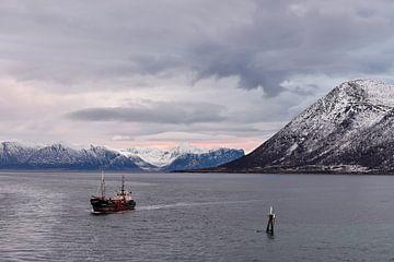Vissersboot in Risøyrenna, Noorwegen van