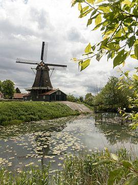 Niederländische Landschaft | Mühle | Deventer von Marianne Twijnstra-Gerrits