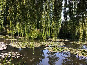 Ware inspiratie van Monet in zijn tuin in Giverny 3