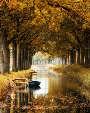 Herbst - Friesland