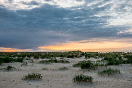 Texel duinen en avondrood