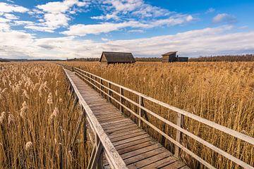 Das Fischerhaus am Federsee von MindScape Photography