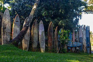 Surfboard muur van Sylvia de Strandjutter