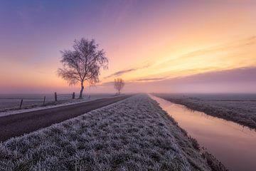 Lever de soleil dans le polder sur Dennisart Fotografie