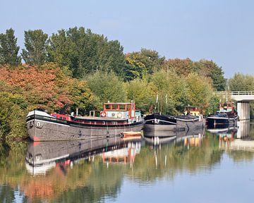 péniches amarrées dans un canal de végétation, Tilburg sur Tony Vingerhoets