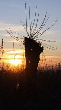 Zonsondergang  zuiderzeestrand  van 10a Boes