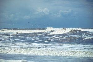 Golvende Noordzee Texel met meeuw en blauwe lucht met wolken van Natascha Teubl
