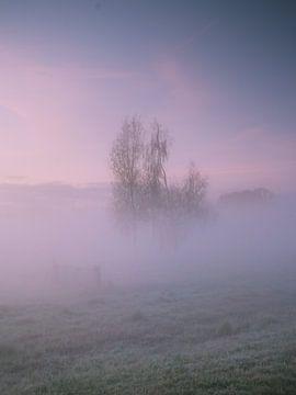 Mistige morgen I van Diane van Veen
