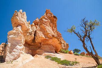 BRYCE CANYON Fascinerende rotsformaties van Melanie Viola