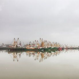Harlingen Visserijhaven van Nils Bakker