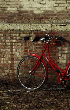 Op de fiets van Lisanne Reijnen