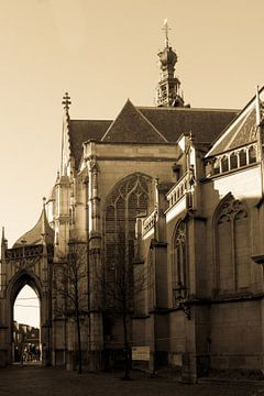 Sint Stevenskerk Nijmegen van Tessa Louwerens