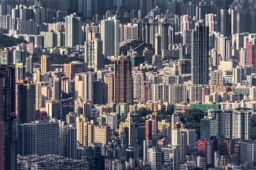 HONG KONG 12 van