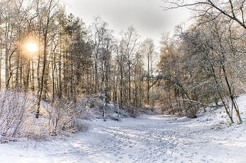 Winterweer in Nederland von Mark Bolijn