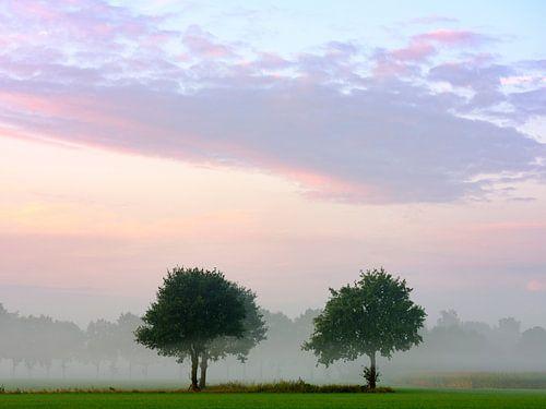 De Bomen, Zelhem