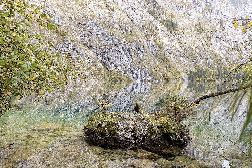 Obersee I von Michael Schulz-Dostal