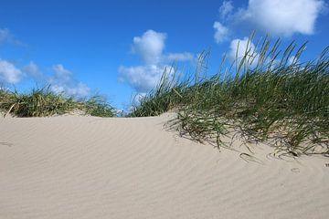 Sandwellen im Juniwind von