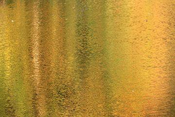 Herfst kleuren in het water van Bobsphotography