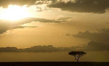 Zonsondergang op de vlaktes van de Masai Mara, Kenia. van Louis en Astrid Drent Fotografie