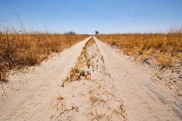 De eindeloze zandweg van Jolene van den Berg
