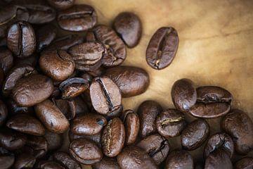 koffietijd van Kristof Ven