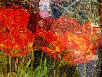 Tulpen onder japanse esdoorn van Anita Snik-Broeken