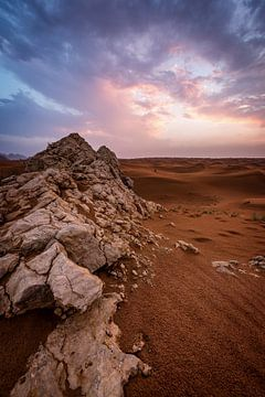 Dubai-woestijn van Stefan Schäfer