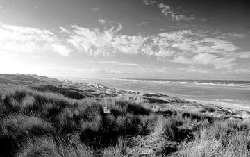 de duinen en zee van Vlieland van ticus media