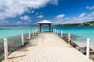 Caravelle beach van