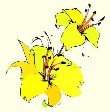 Lilie Blume