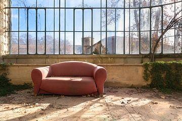 Verlaten Serre. van Roman Robroek