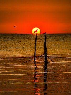 IJsselmeer zonsondergang sur Harrie Muis