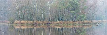 Winterstimmung, Leersumse Veld, Utrechtse Heuvelrug, Niederlande von Sjaak den Breeje Landscape Photographer