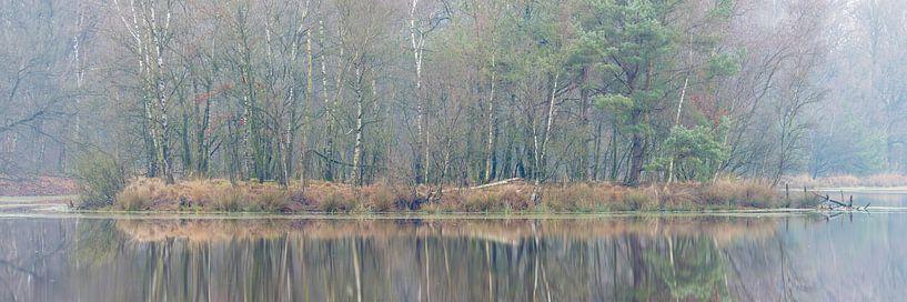 Winterstimmung, Leersumse Veld, Utrechtse Heuvelrug, Niederlande von Sjaak den Breeje Landschapsfotografie