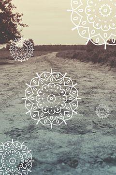 Der Weg zum Unbekannten - Mandala von Mandy Jonen
