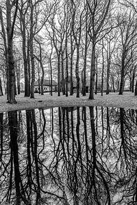 Spiegeling in de dobbe van Andre Brasse Photography