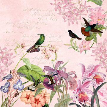 Tropische Vögel im Pink  Blüten-Dschungel von Uta Naumann