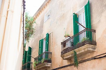 Ibiza-stad sur Sharona Sprong