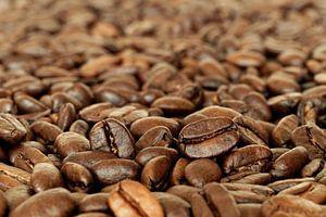 Geurige Geroosterde Glanzende koffiebonen van