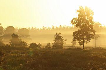 Zonsopgang / Sunrise van Jan Katsman