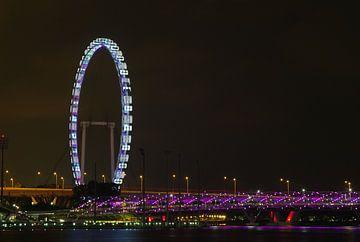 Riesenrad Singapur mit Helix-Brücke 1 von Martin de Hoog