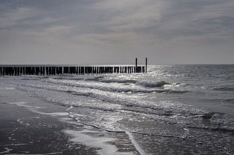 Tegenlichtopname op het strand van Zoutelande en Westkapelle van Sean Vos