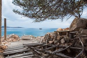Ibiza van