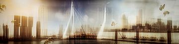 Rotterdam Tuti Fruti 01 von Mark Isarin | Fotografie